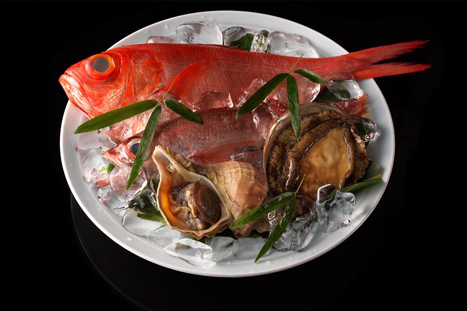 魚料理 料理撮影