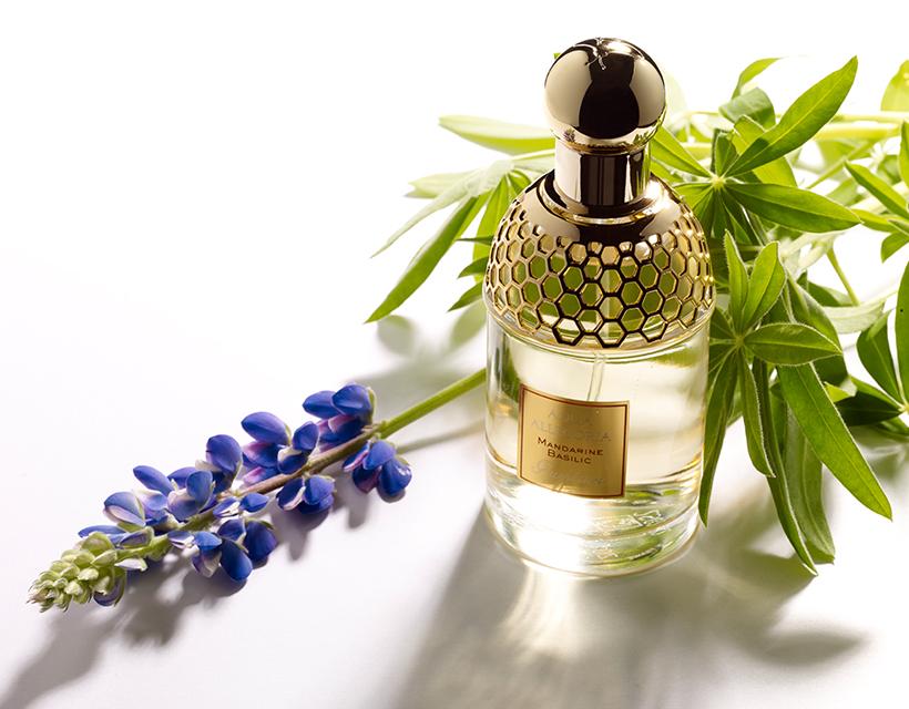香水の写真撮影